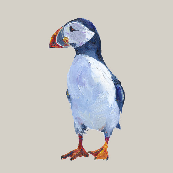 Puffin - Grace Sugar Sands